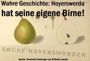 Wahre Geschichte: Hoyerswerda hat seine eigene Birne!