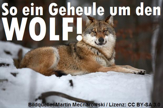 So ein Geheule um den Wolf!