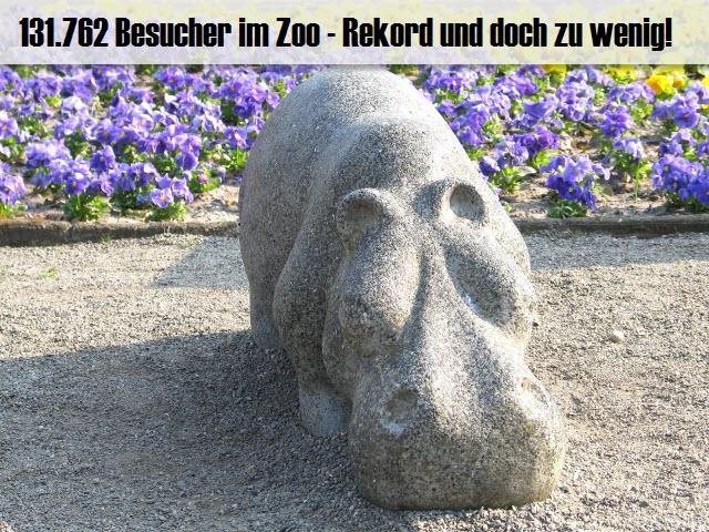 131.762 Besucher im Zoo Hoyerswerda - Rekord und doch viel zu wenig!